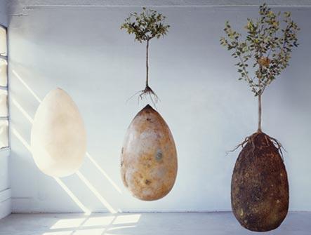 Capsula Mundi egg shaped coffin and urn